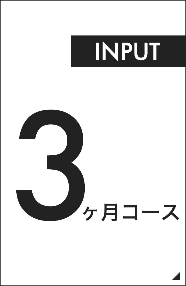 インプット重視の3ヶ月コース