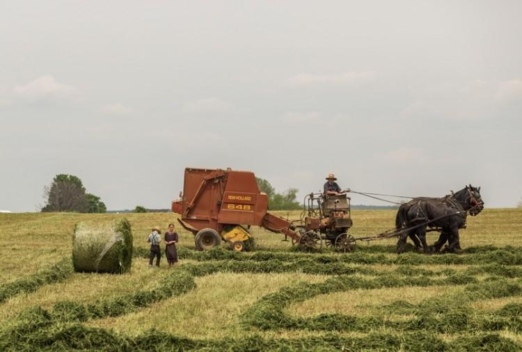 農業はどうなるか