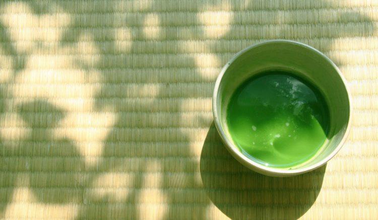 セブ島で茶道