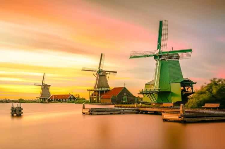 オランダの「スマートアグリ」
